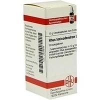 Rhus Toxicodendron D10 Globuli
