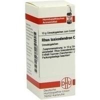 Rhus Toxicodendron C12 Globuli