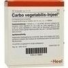 Carbo Vegetabilis Injeel Ampullen 10 St