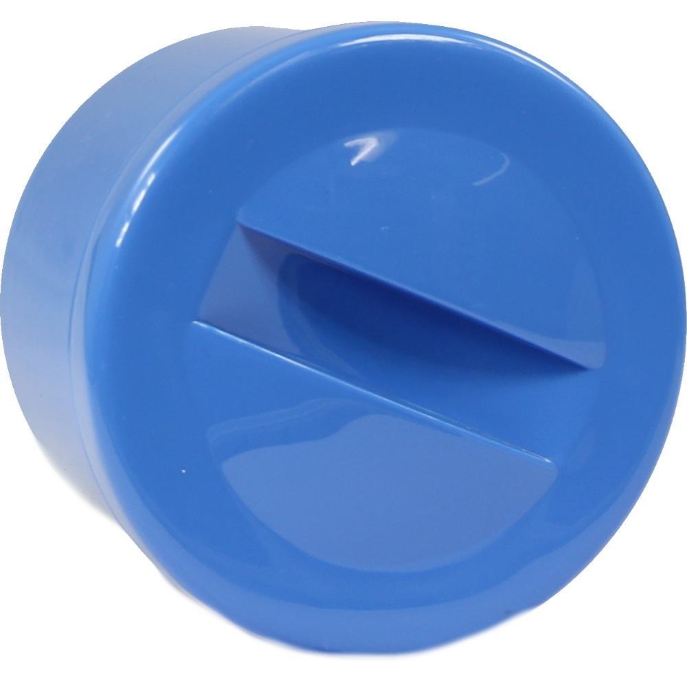 Prothesenbehälter Kunststoff mit Deckel blau 1 St