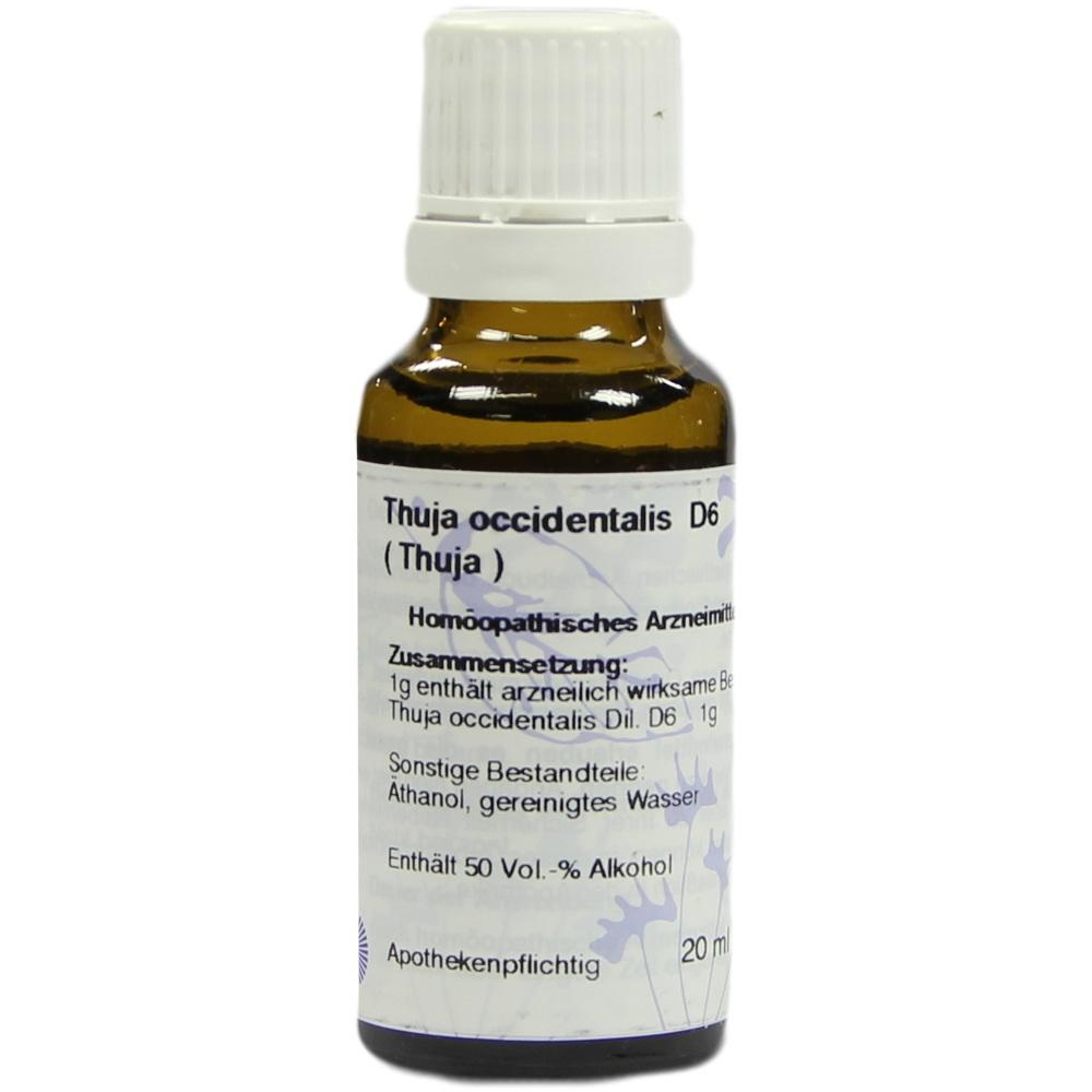Thuja D 6 Dilution 20 ml