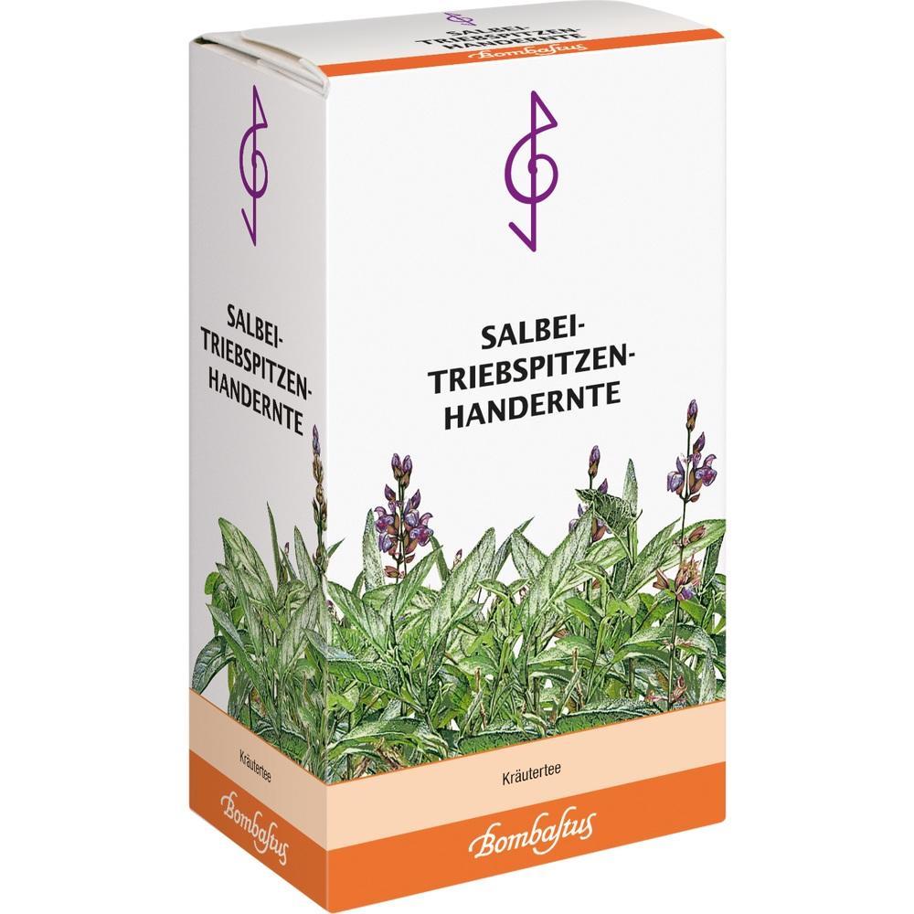 Salbei Triebspitzen Tee Handernte 25 g