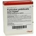 HEEL FUNICULUS UMBILICAL. SUIS INJEELE 1,1 ml