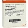 HAMAMELIS INJEEL Ampullen
