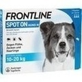 FRONTLINE Spot on H 20 vet. Lösung