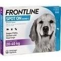 FRONTLINE Spot on H 40 vet. Lösung