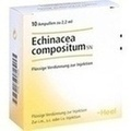 HEEL ECHINACEA COMPOSITUM SN Ampoules