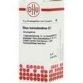 RHUS TOXICODENDRON D 6 Globuli