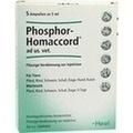 PHOSPHOR HOMACCORD ad us.vet.Ampullen
