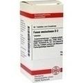 FUCUS VESICULOSUS D 2 Tabletten