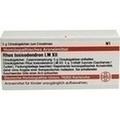 LM RHUS toxicodendron XII Globuli