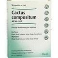 CACTUS COMPOSITUM ad us.vet.Ampullen
