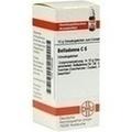 BELLADONNA C 6 Globuli