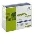 GINKGO 100 mg Kapseln+B1+C+E