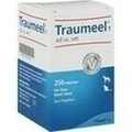 TRAUMEEL T Tablets for Dogs/Cats