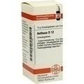AETHUSA D 12 Globuli