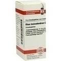 RHUS TOXICODENDRON C 12 Globuli