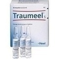 HEEL TRAUMEEL S Ampoules