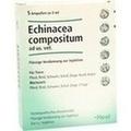 ECHINACEA COMPOSITUM veterinario ampollas