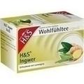 H&S Ingwer Filterbeutel