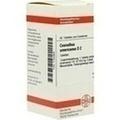 CEANOTHUS AMERICANUS D 2 Tabletten
