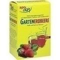 APODAY Gartenerdbeere Multivitamin+Calcium Pulver