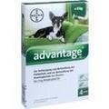 ADVANTAGE 40 Lösung f.Hunde bis 4 kg