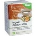 INGWER ORANGE Spicy Tee Salus Filterbeutel