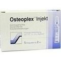 OSTEOPLEX Injekt Ampullen