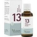 BIOCHEMIE Pflüger 13 Kalium arsenicosum D 6 Tropf.