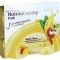 NUTRINI Creamy Fruit Sommerfrüchte