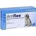 Amflee 268 mg Lösung zum Auftropfen für große Hunde