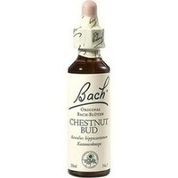 BACHBLÜTEN Chestnut Bud Tropfen