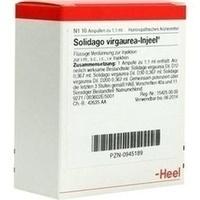 SOLIDAGO VIRGAUREA INJEEL Ampullen