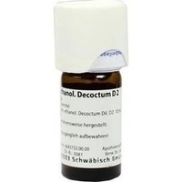 LEVISTICUM ETHANOL.Decoctum D 2 Dilution