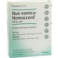 NUX VOMICA HOMACCORD ad us.vet.Ampullen