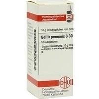 BELLIS PERENNIS C30