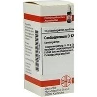 CARDIOSPERMUM D12