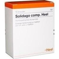 Abbildung von Solidago Comp. Heel  Ampullen 10 Stück