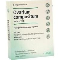 OVARIUM COMPOSITUM ad us.vet.Ampullen