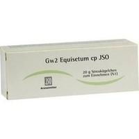 JSO Gw 2 Equisetum cp Globuli