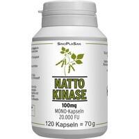 NATTOKINASE 100 mg Mono 20.000 FU Kapseln