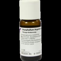BRYOPHYLLUM ARGENTO cultum D 3 Dilution