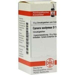 CYNARA SCOL D12