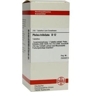 PTELEA TRIFOLIATA D 12 Tabletten