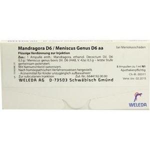 MANDRAGORA D 6/Meniscus genus D 6 aa Ampullen