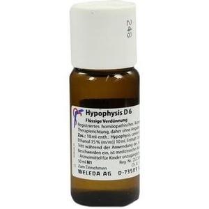 HYPOPHYSIS D 6 Dilution