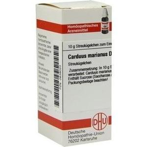 CARDUUS MAR D 6