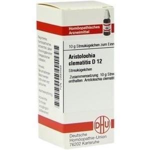 ARISTOLOCHIA CLEM D12