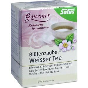 WEISSER TEE Blütenzauber Bio Salus Filterbeutel